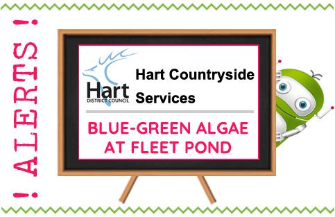 Hampshire Countryside Alert Blue Green Algae Fleet Pond - Fleet, Hampshire
