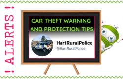 Vehicle Theft Warnings and Protection Tips